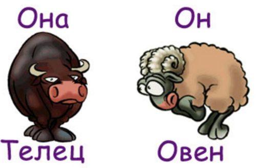 Совместимость мужчины-Овна и женщины-Тельца!