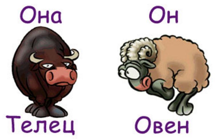 Совместимость мужчина-овен и женщина-телец!