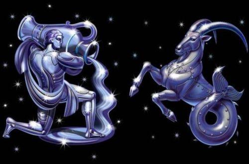 Мужчина Козерог и женщина Водолей. Совместимость знаков в любви.