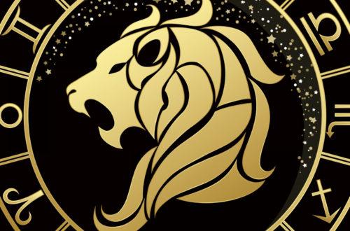 Интересные факты о Львах!