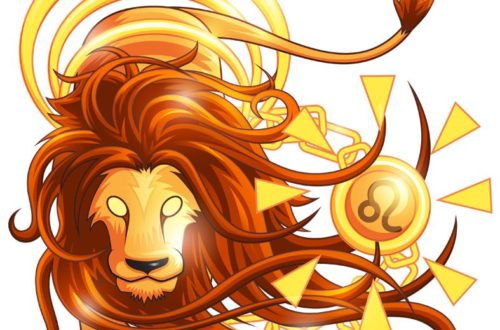 Правдивые факты о Львах!