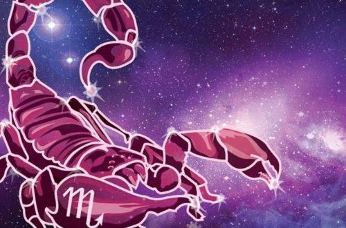 10 фактов о Скорпионе!