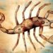 Как влюбить в себя скорпиона!