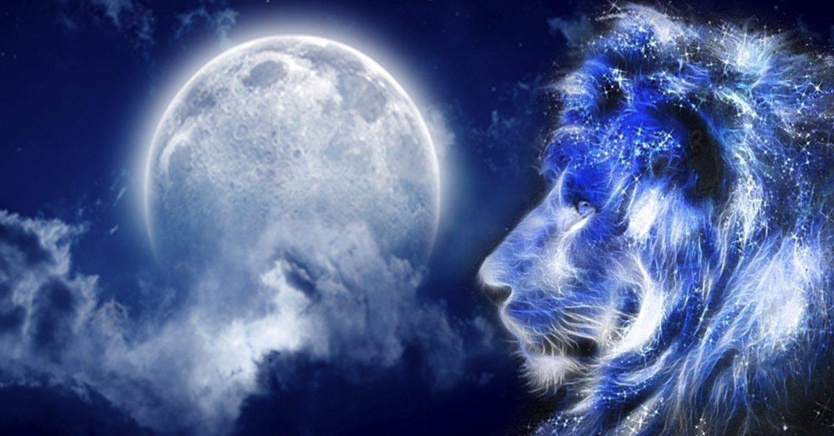 картинки лунных львы бананов рецепты фото
