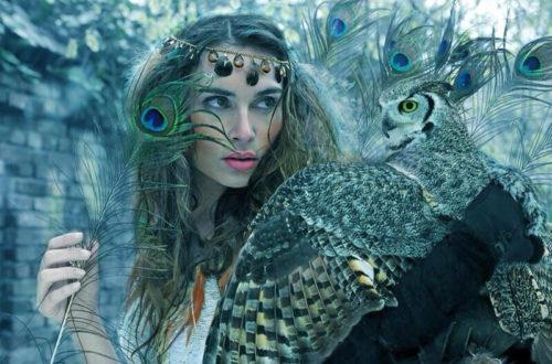 Существует 3 знака, которых смело можно назвать «совами».